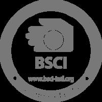 Logo bsci