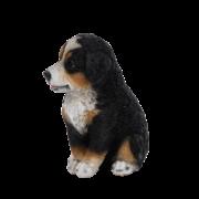 Zittende pup