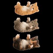 Liegende spielende Katze