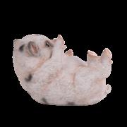 Piglet lying ass.