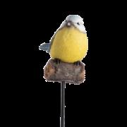 Oiseaux de jardin à piquer