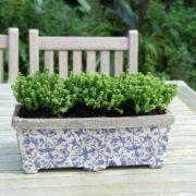 Aged ceramic balcony planter