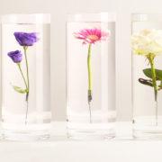 Versunkene Blumenvase S.