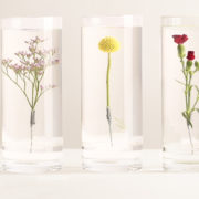 Vase pour Fleurs Immergées S.
