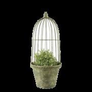 AM Green flower pot/cloche set/3