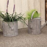 AM lion round flower pots set/2