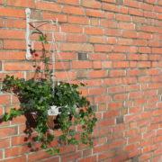 AM lion hanging basket hook
