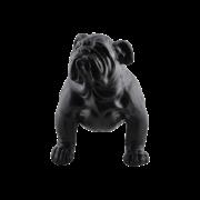 Bench Bull dog
