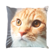 Outdoor cushion with cat print L