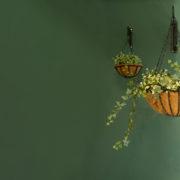 """Giant Hanging basket 24"""" & hook"""