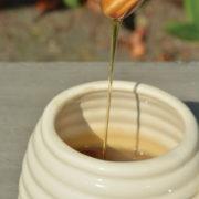 Honey pot with honey dipper