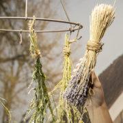 Flower & herb drying rack metal