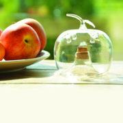 Fruit fly trap apple