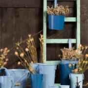 50 tinten blauw plantensproeier