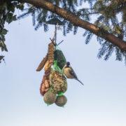 Feeding hooks dark green