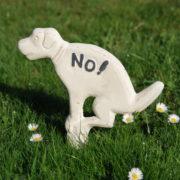 "Dog sign pooing ""No!"" white"
