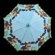 Children umbrella farm animals