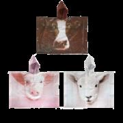 Children poncho farm animals