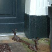 Shoescraper deer