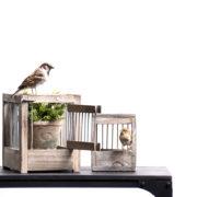 Vogelkooi hout L