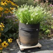 Plateau à roulettes pour plantes L