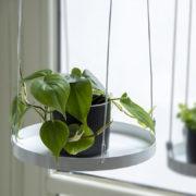 Plateaux de fenêtre suspendus ronds L