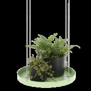 Rundes grünes Pflanzentablett L
