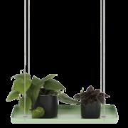 Rechteckiges grünes Pflanzentablett S
