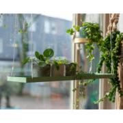 Rechteckiges grünes Pflanzentablett L