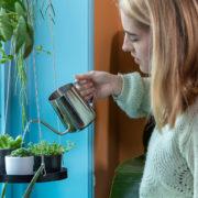 Indoor garden watering can