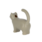 Watering can cat