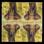 Paper napkins elephant 33x33cm