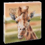 Paper napkins giraffe 33x33cm