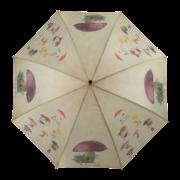 Umbrella mushrooms