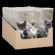 Paper napkins kittens 33x33cm