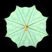 Umbrella banana leaves