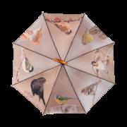 Wintervogel-Regenschirm